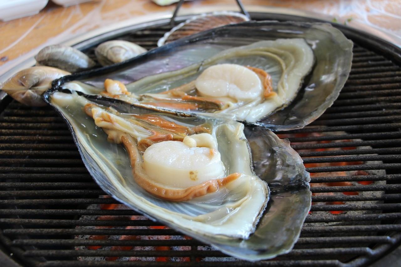貝類 海鮮 食事 和食